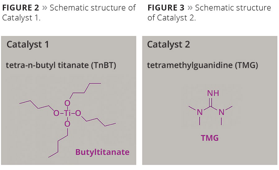 Schematic structure of Catalyst