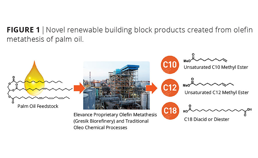 Natural Oil Metathesis Unlocks High-Performance Building Blocks for Waterborne Coating Additives and Polyurethane Dispersions