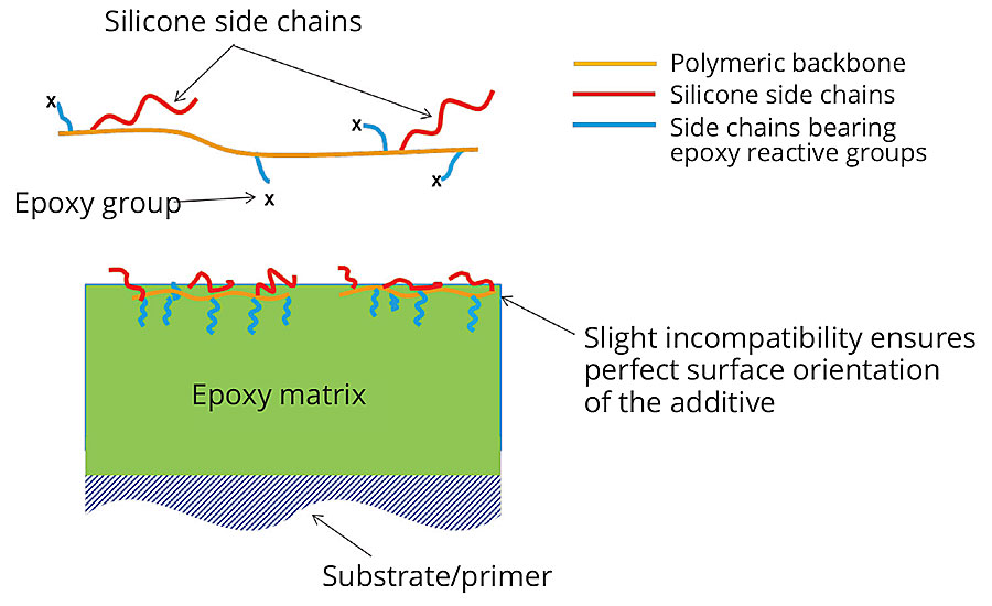 General schematic of the new easy-to-clean additive as well as an illustrative schematic showing its orientation on the surface of a coating.