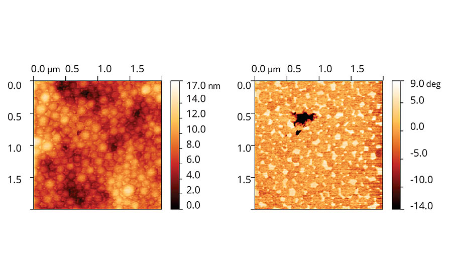 Topographic and phase images of acrylic latex film containing Coalescent B.