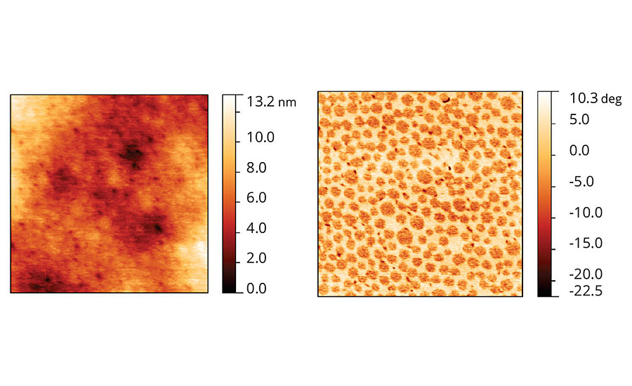 Topographic and phase images of acrylic latex film containing Coalescent C.