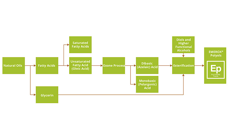 FIGURE 1 » Process flow chart, from natural oils to polyols based on azelaic acid.