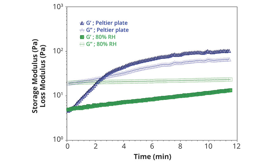 Parallel plate oscillation measurement of paint over time, on uncovered Peltier plate (blue) and in 80% relative humidity chamber (green)