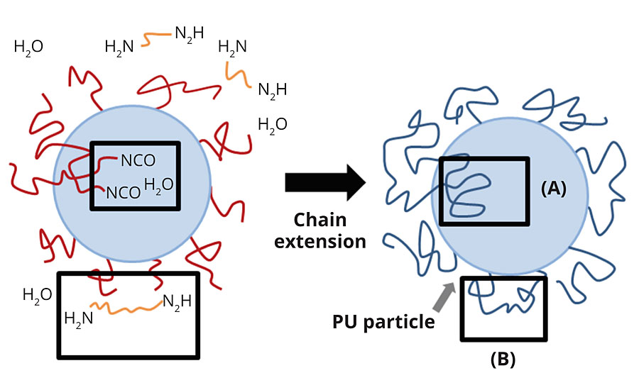PUD particle model proposed by Jhon et al. (2001). There are different NCO locations on particle surfaces (B) or inside particles (A) where the chain extenders or water need time to penetrate and react with NCO