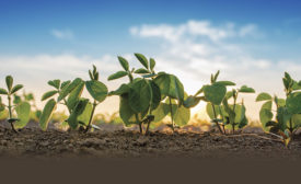 Sustainability: Shifting from Buzzword to Profit Driver