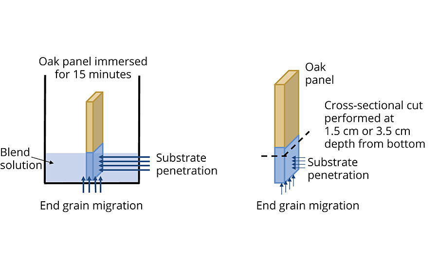 Set-up for wood penetration