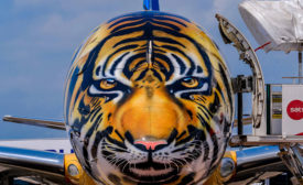 Aircraft Maker Goes Wild with Aerospace Coatings