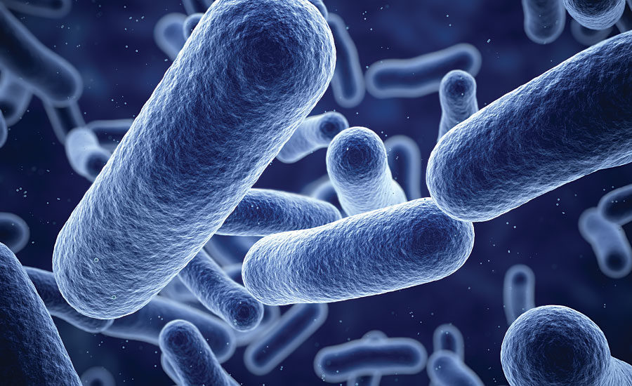 A Guide to Antimicrobial Coatings   2020-07-14   PCI Magazine