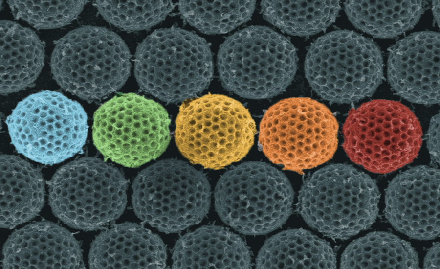 Synthetic microspheres